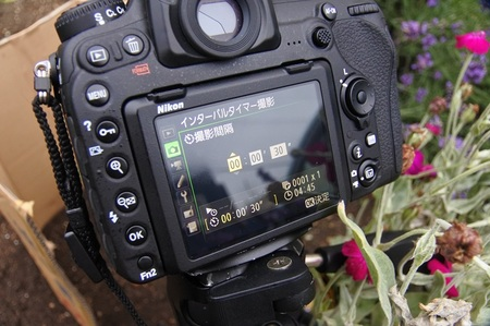 DSC_5704.JPG