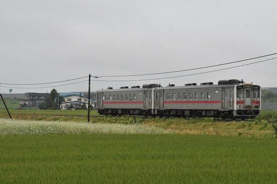 DSC_7731-6.JPG