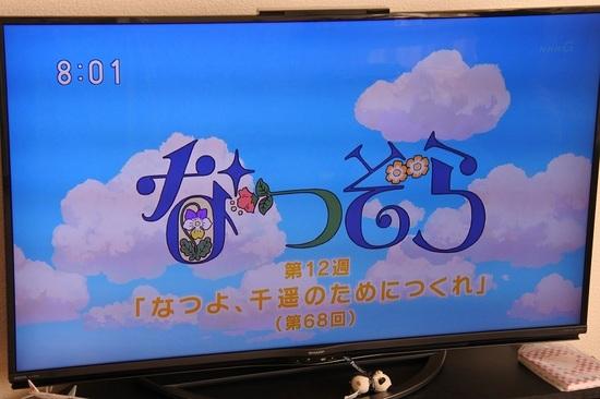 DSC_6524.JPG